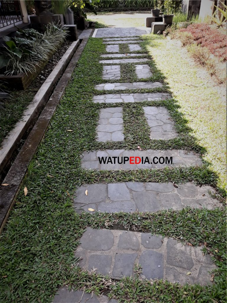 Batu candi kulit adalah batu sisa penggergajian dengan bentuk lempeng rata rata tebalnya 4 cm dan lebarnya 30 an cm.